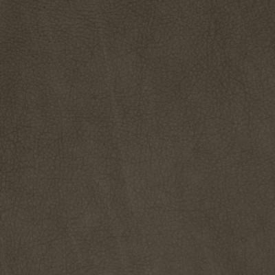 F2062 Shadow Fabric