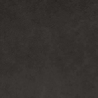 F2066 Coffee Fabric