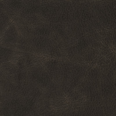 F2070 Dark Roast Fabric
