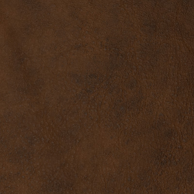 F2079 Spice Fabric