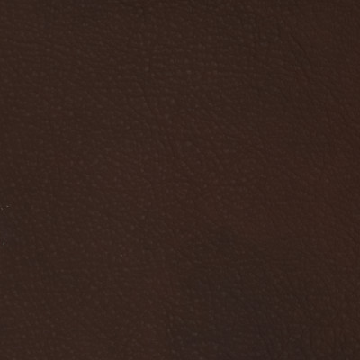 F2088 Hickory Fabric