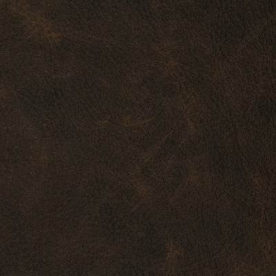 F2102 Slicker Fabric