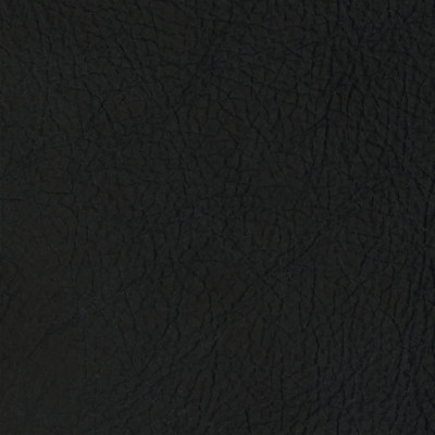 F2109 Blueberry Fabric