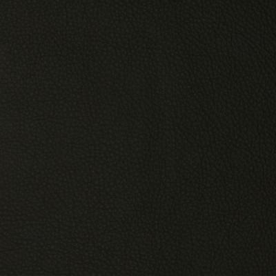 F2110 Navy Fabric
