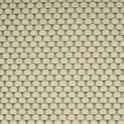F2358 Lemongrass Fabric