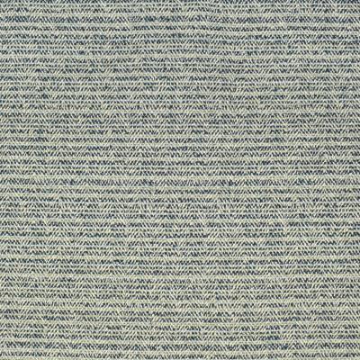 F2423 Indigo Fabric