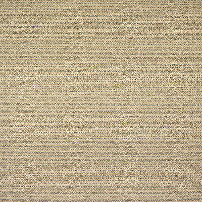 F2466 Tan Fabric