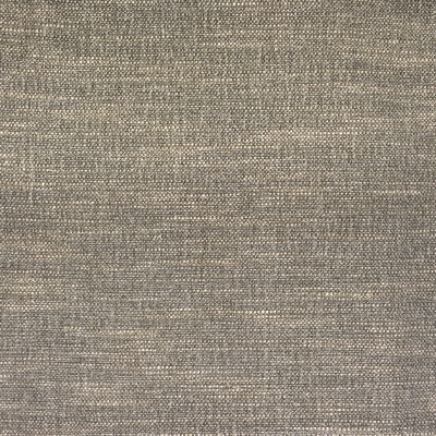 F2494 Oyster Fabric