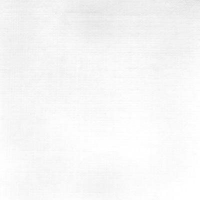 F2513 Optic White Fabric