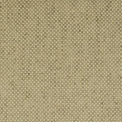 F2525 Sand Fabric
