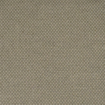 F2534 Nickel Fabric