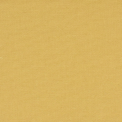 F2542 Sunshine Fabric