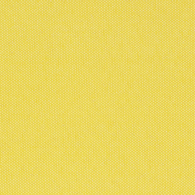 F2634 Canary Fabric