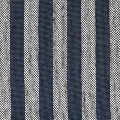 F2681 Midnight Fabric