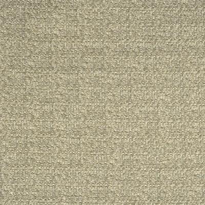 F2749 Birch Fabric