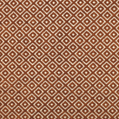 F2841 Cinnamon Fabric
