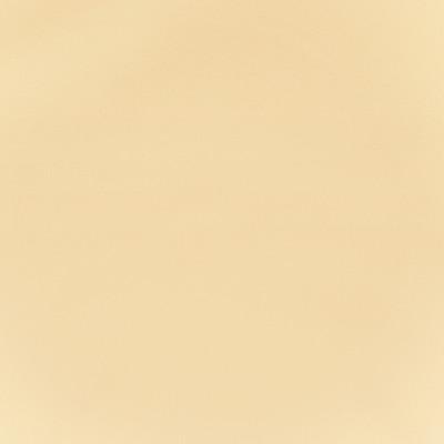 F2864 Vanilla Fabric
