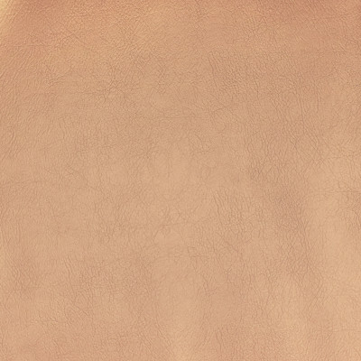 F2867 Champagne Fabric