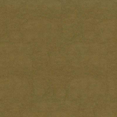 F2872 Tan Fabric