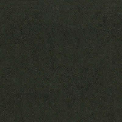 F2880 Charcoal Fabric