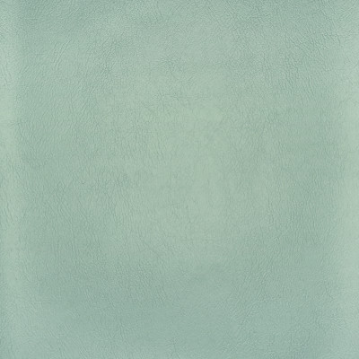 F2886 Spa Fabric