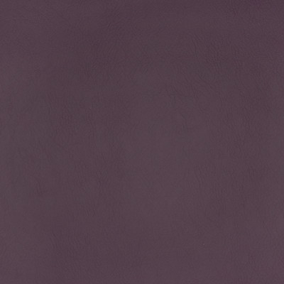 F2893 Plum Fabric