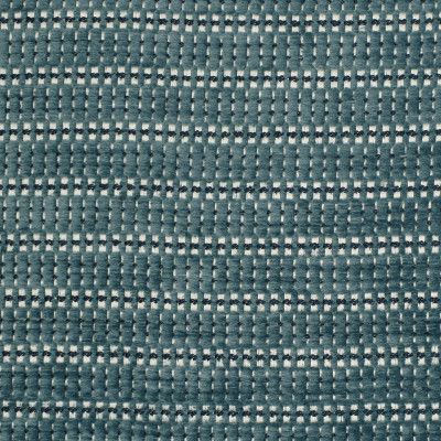 F2967 Skipper Fabric