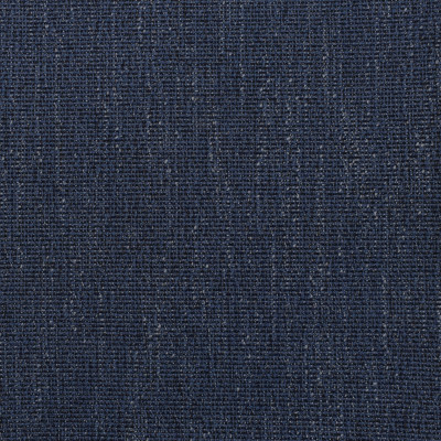 F2981 Midnight Fabric