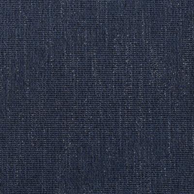 F2981 Midnight Fabric