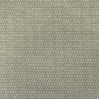 F2989 Celadon Fabric