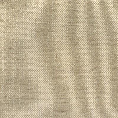 F3076 Vanilla Fabric