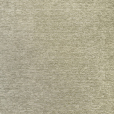 F3096 Platinum Fabric