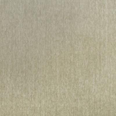 F3096 Platinum Fabric