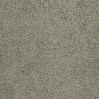 F3197 Ash Fabric