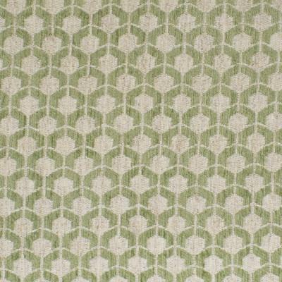 F3271 Sage Fabric