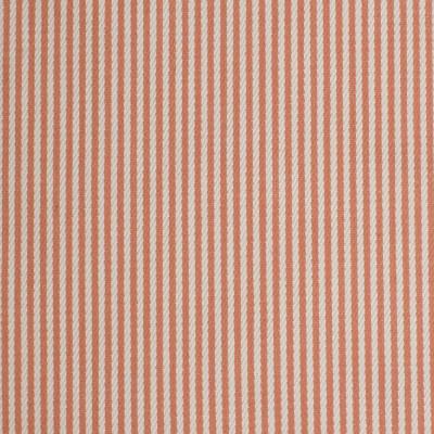 F3300 Sorbet Fabric