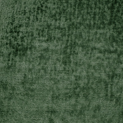 F3406 Forest Fabric