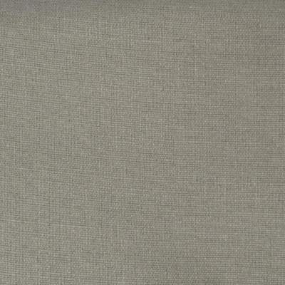 F3416 Platinum Fabric