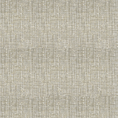 F3538 Oyster Fabric