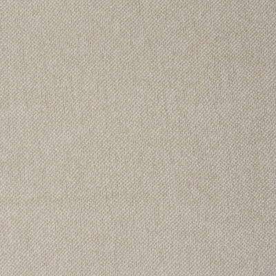 F3636 Sand Fabric