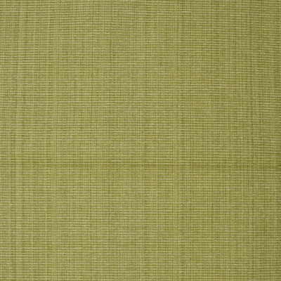 F3755 Lime Fabric