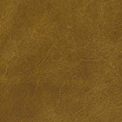 F3795 Wheat Gold Fabric