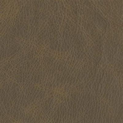 F3797 Coyote Fabric
