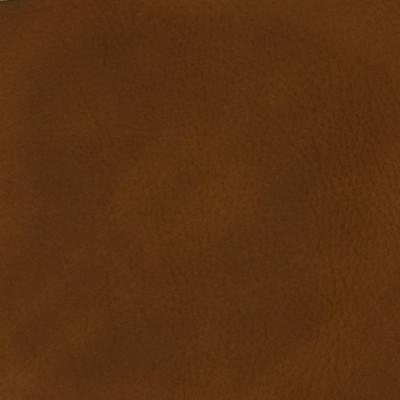 F3816 Cuero Fabric