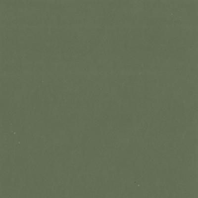 F3818 Lichen Fabric