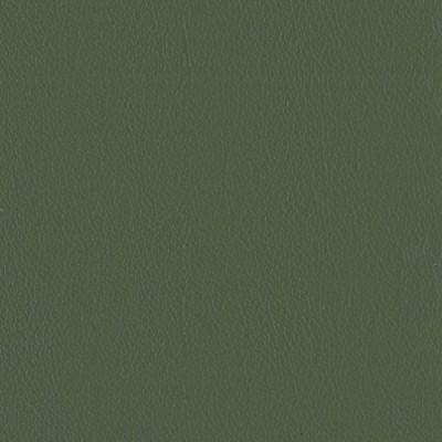 F3822 Olive Fabric