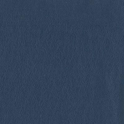 F3824 Indigo Fabric