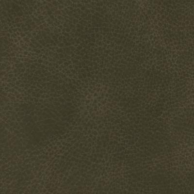 F3835 Dark Charcoal Fabric