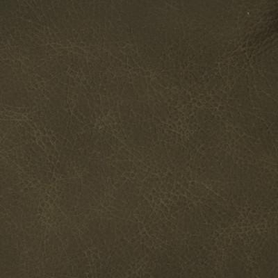 F3840 Magnetite Fabric