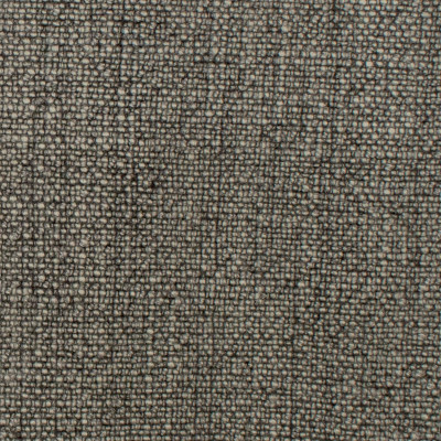 S1018 Charcoal Fabric